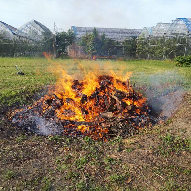 野焼き着火